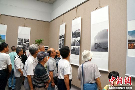 图为参观者正在欣赏银奖作品《新桂林山水》。中新社发 杨陈 摄