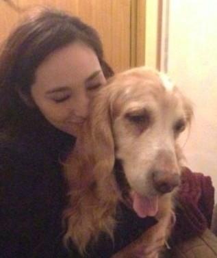 吴佩慈因爱犬生病,和男友分手后又复合。(图片来自台媒)