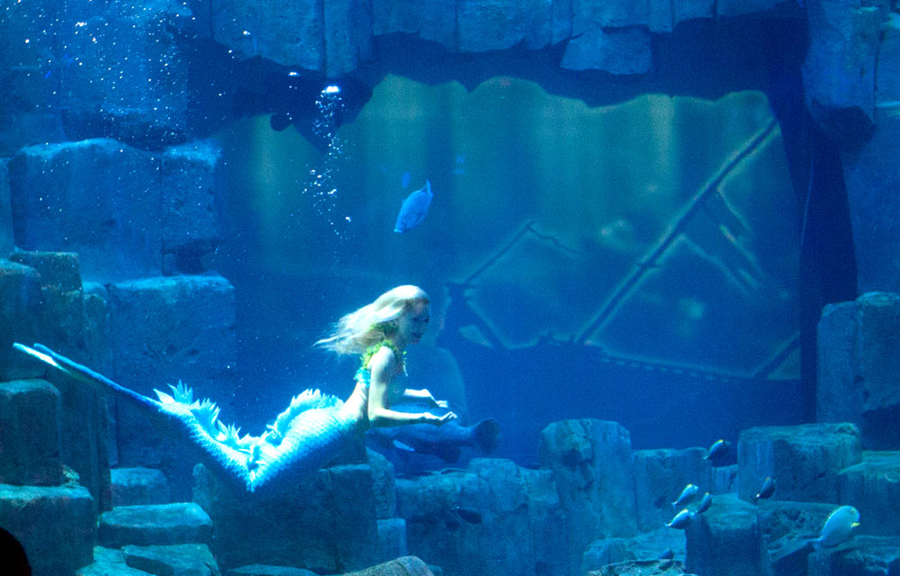 Parisians have been getting an up-close look at a real-life mermaid at the French capital