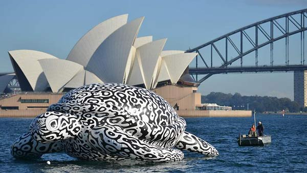 Sydney Harbour is no stranger to inflatable animals. Last year, it was a gigantic rubber duck that got Australians quacking other creatures have also been spotted.