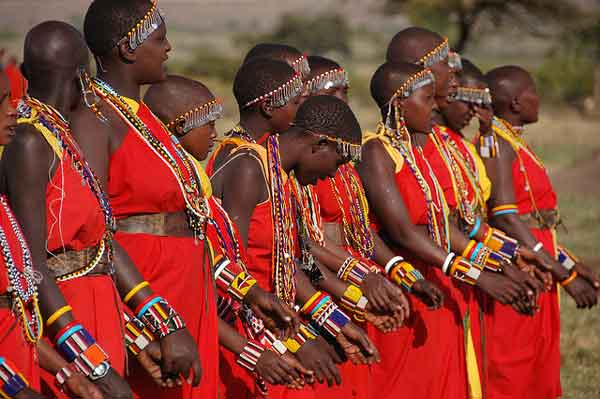 Kenya traditional marriage Maasai ceremony.
