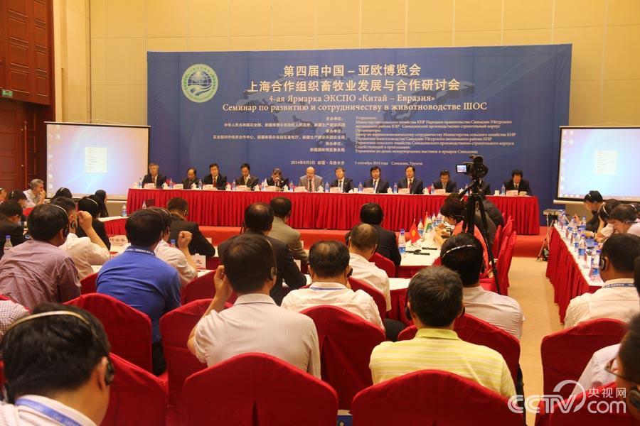 В Урумчи состоялось совещание ШОС по развитию животноводства Фото CCTV.com / Чжу Чжэнь
