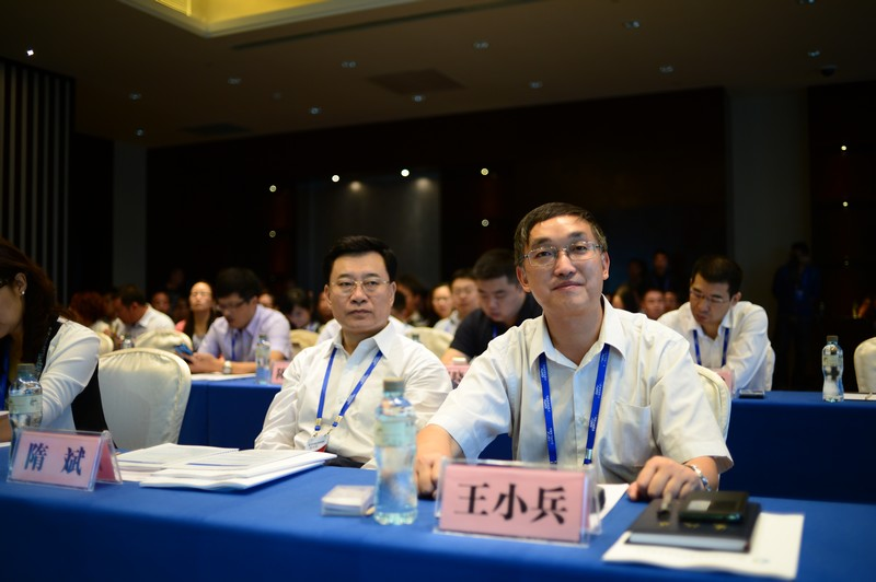 农业部市场与经济信息司副司长   王小兵