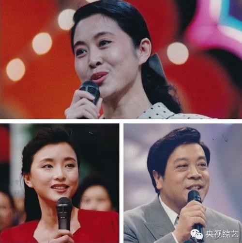 1993年:赵忠祥、杨澜、倪萍