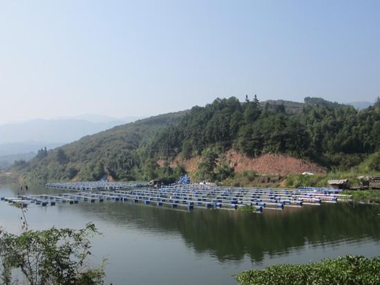 二是山上物产丰盛:大发瑶族乡是典型的山区农业乡.