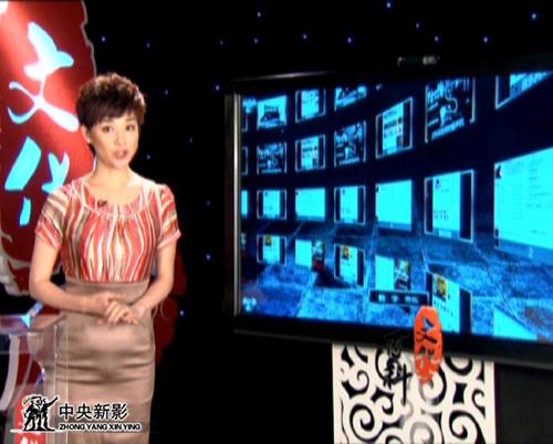 《文化大百科》主持人王玲玲