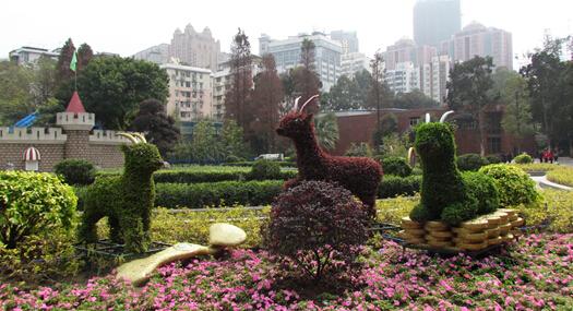 """广州动物园园长刘立军:春节假期动物照常""""上班"""""""