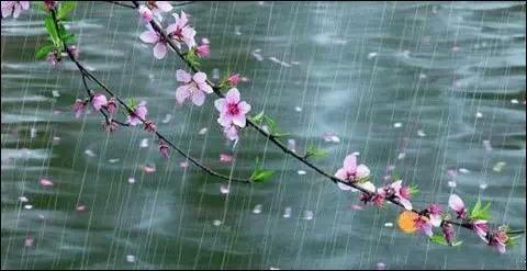 春雨贵如油7个别有风味的湿身旅行地_旅游性感了美女图片