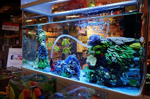 鱼缸店面装修图片