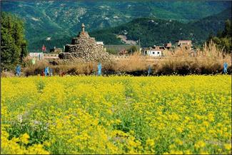 A606 游美丽的古山重村 漳州市长泰县第二实验小学 吴梓敬