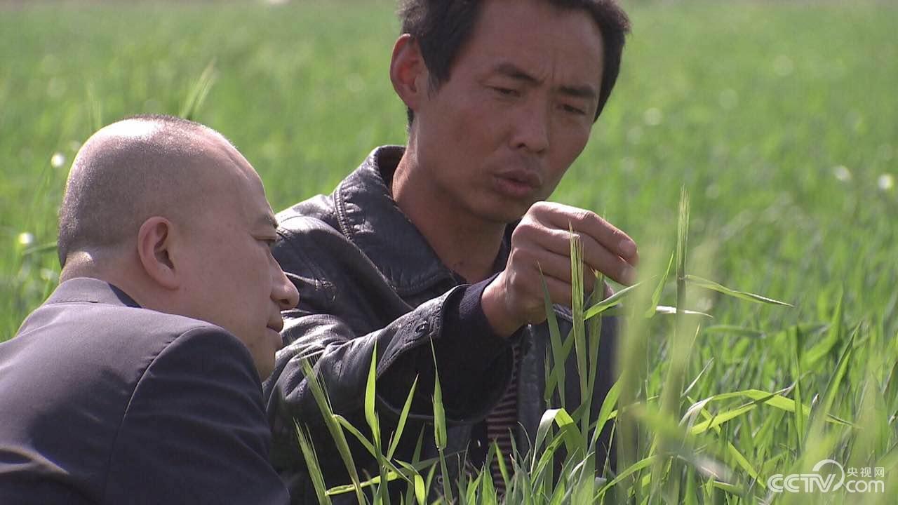 Han Bin and Gao Yinggang