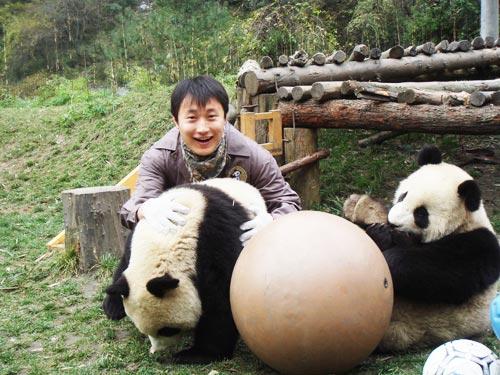 手工制作熊猫篮球筐