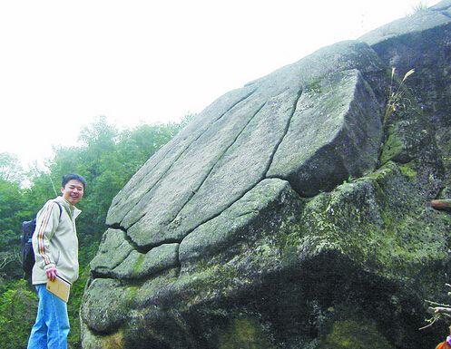 形象逼真的龟背石。