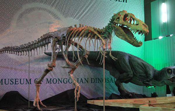 Архив: Редкие останки динозавров представлены на выставке в Улан-Баторе