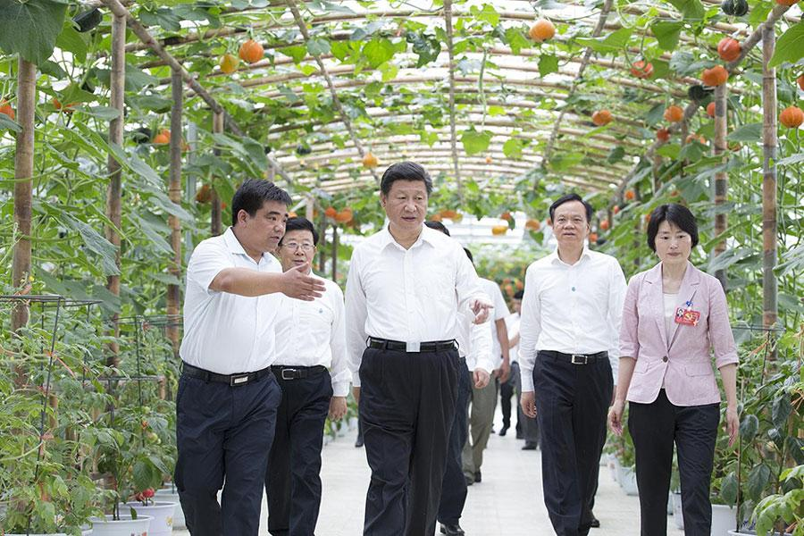 Chinese President Xi Jinping inspects the temperature controlled greenhouse of an agriculture park in Zunyi, southwest China