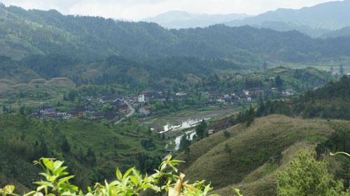 村庄月景矢量图