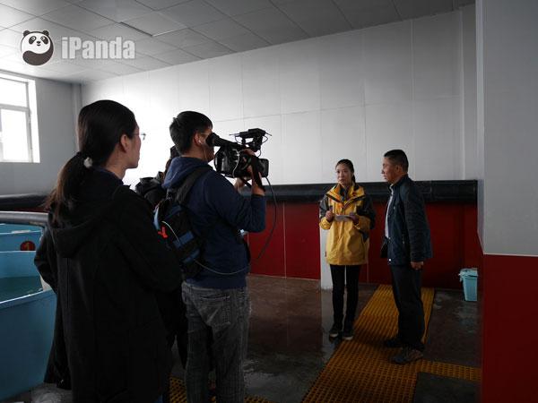 青海湖裸鲤人工放流站副站长俞录贤接受采访 并讲解裸鲤人工培育过程