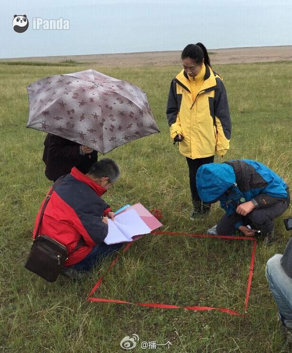 科考人员在海心山上检测植被情况 李宁远 摄