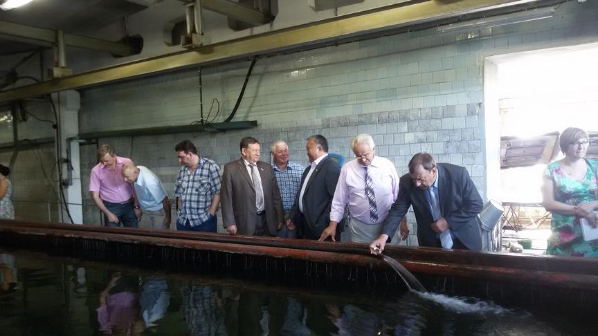 В Иркутской области разрабатывают программу помощи рыбным хозяйствам