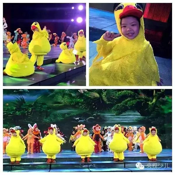 歌舞《动物森林》的小演员身穿小鸭子服装,可爱吧!