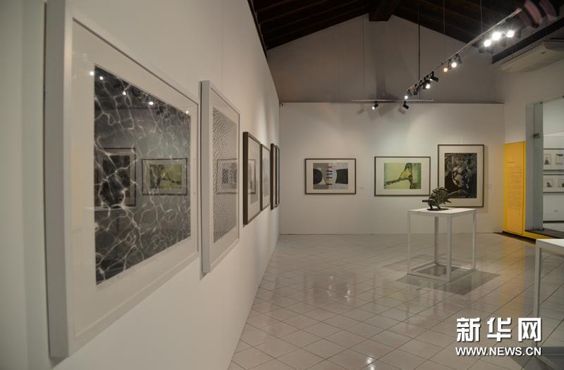 高度赞扬中国美术馆的展览策划和筹备工作图片