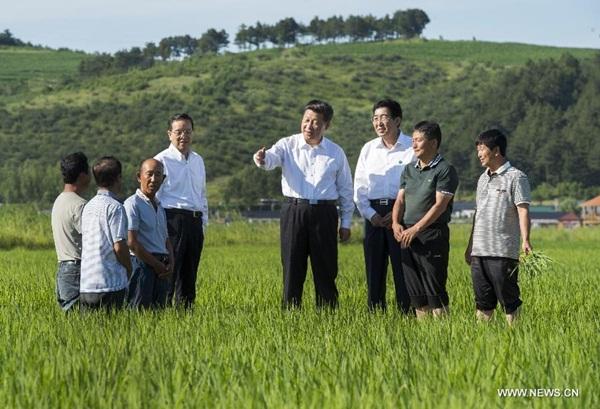 تفتيش الرئيس الصينى شى جين بينغ فى مقاطعة جيلين