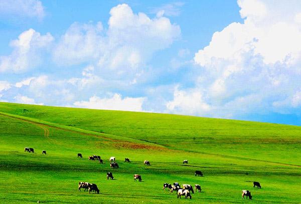 夏季京郊十大好去处 草原海边瀑布全齐了