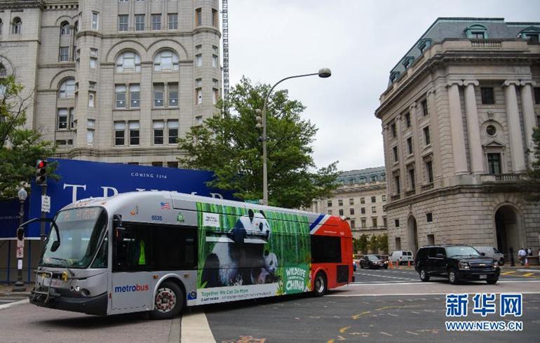 9月21日,在美国首都华盛顿,一辆印有大熊猫公益广告的公交车在街上行驶。(新华社记者鲍丹丹摄)