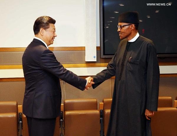 جتمع الرئيس الصيني شي جين بينغ مع نظيره النيجيري محمد بخاري