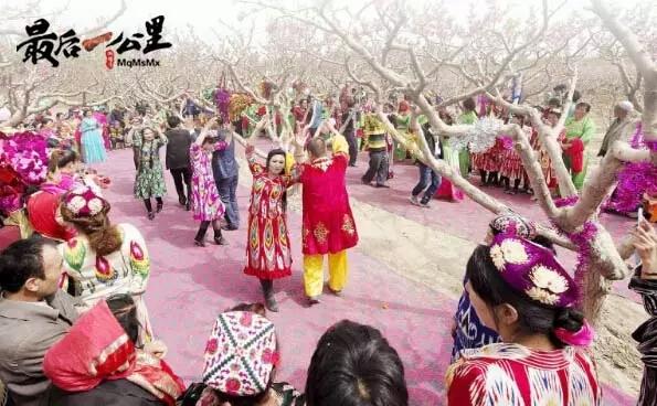 叶城县恰尔巴格镇农民在园艺场桃花园跳起麦西来甫。