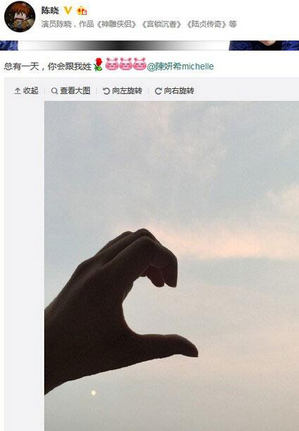 陈晓微博截图