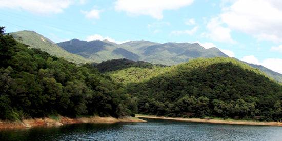 海沧天竺山森林公园_【清新森林等你去深呼吸!】之海沧天竺山森林公园