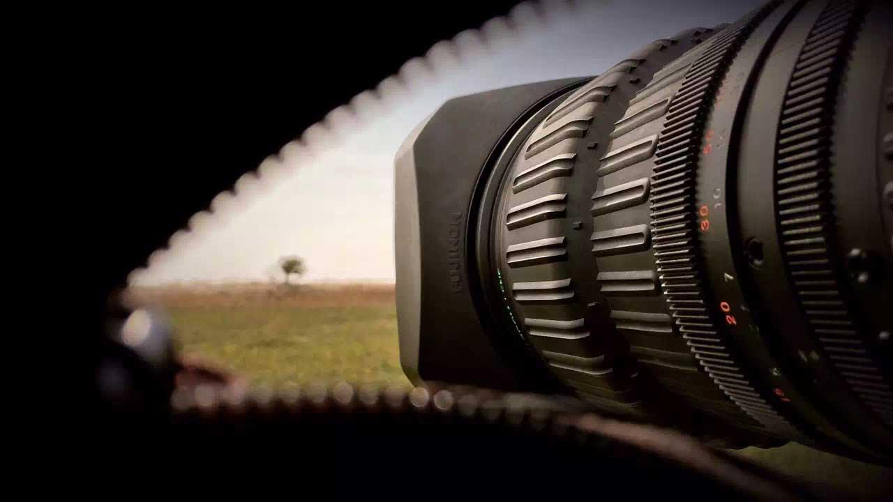 5隐蔽棚中伸出的镜头-许多真贵的图片视频资料皆出自于此