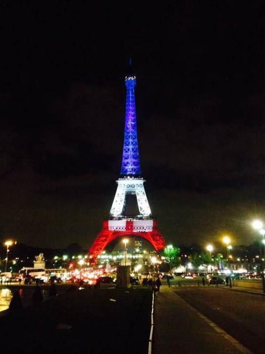 恐袭后巴黎夜景:埃菲尔铁塔身穿国旗颜色(图)