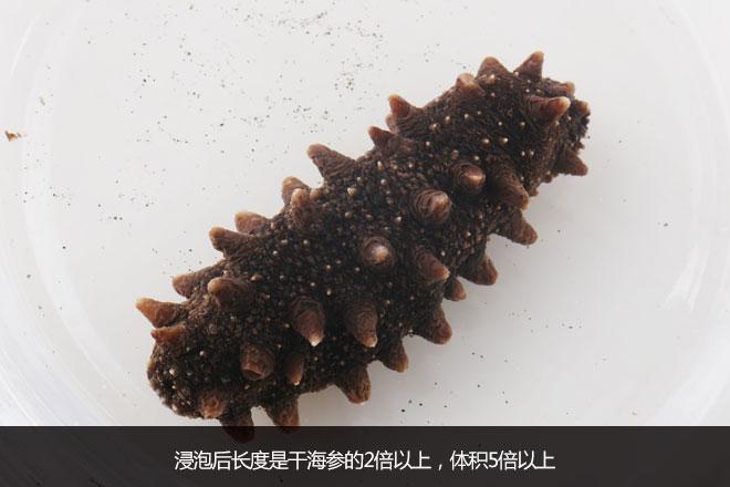 点评: 看色泽,海参根据生长环境的不同,有着不同的颜色,主要分为黑色、棕色、灰色等,但不是通体的黑色。御品祥岛海参参体呈深褐色或褐色,色泽自然。 看大小,御品祥岛海参泡发后长度是干海参的2倍以上,体积5倍以上,只有淡干品质海参才会有如此高的涨发。 鉴体形,体态呈饱满的纺锤形,圆润、肉厚;肉刺呈倒三角型,刺长、肥厚;沙嘴肥大,觅食能力强,集天然海底精华,营养丰富;管足密实、粗壮有力,充满野生活力,变得更加有嚼劲。 尝鲜味,处理不好的海参有一种发腥的怪味。御品祥岛海参以鲜活海参为原料,通过先进工艺保留了海参独