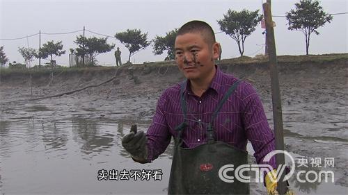 养鱼一年 多卖1000万元