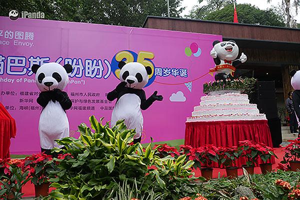 """""""巴斯""""生日庆典盛况  图片/熊猫频道记者李宁远摄"""
