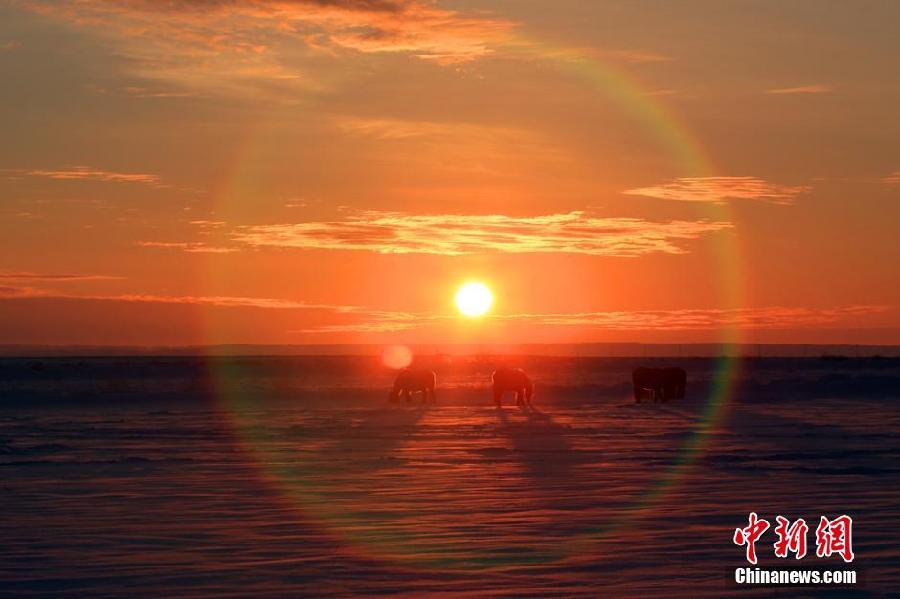Un lever de soleil éblouissant à la frontière sino-mongole