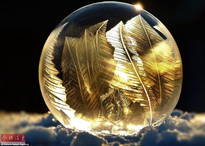 Image : des bulles de savon glacées