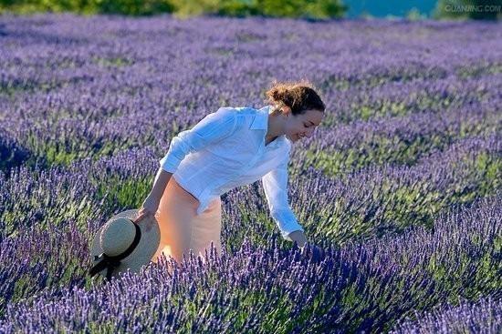 La Provence (France)