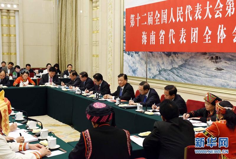 شارك ليو يون شان وفد مقاطعة هانان في المراجعة