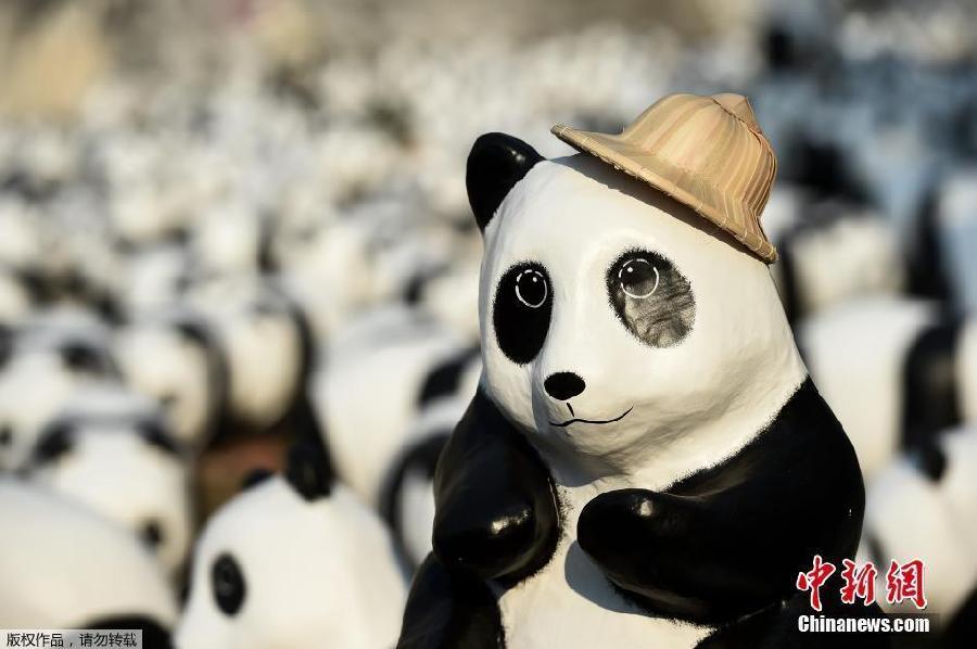 1600 pandas visitent un temple thaïlandais
