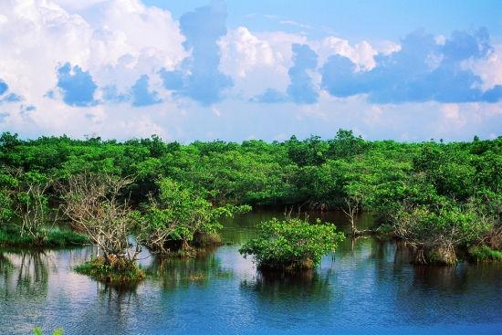 محمية دونغ تشاي قانغ الوطنية