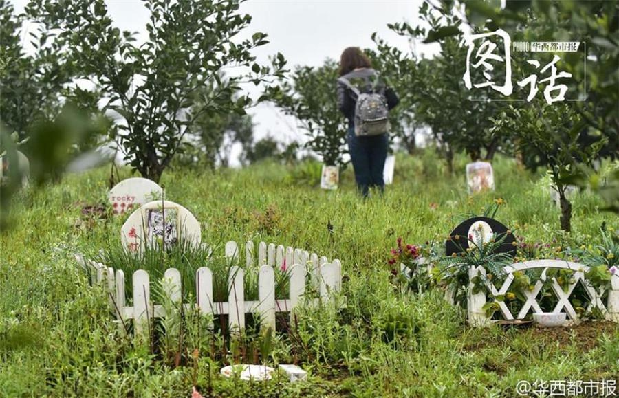 le cimetière des animaux de compagnie à Chengdu