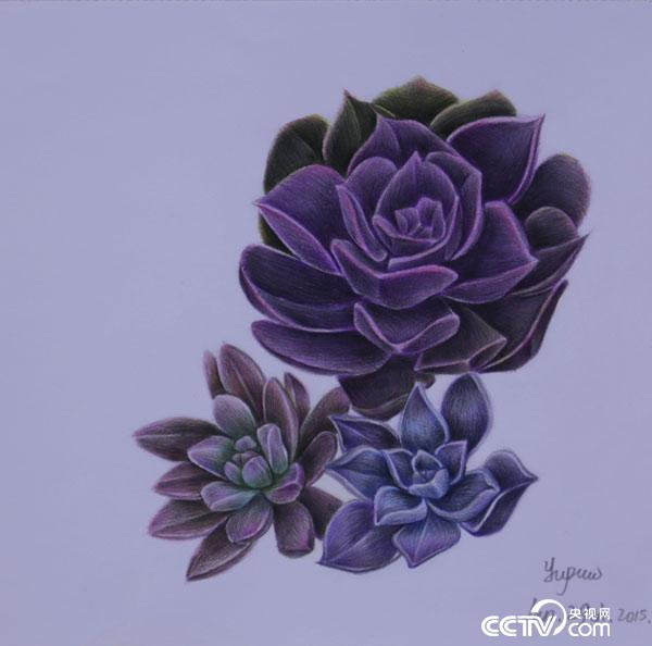A purple flower, drawn by Wang Yupu