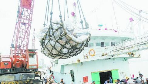 远洋渔船在厦门靠岸卸货。