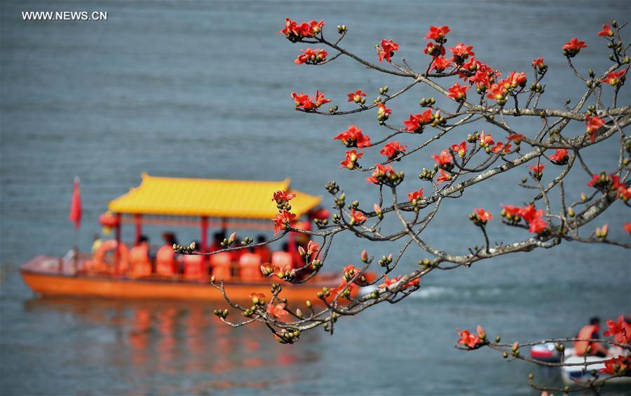 Paysages printaniers colorés en Chine