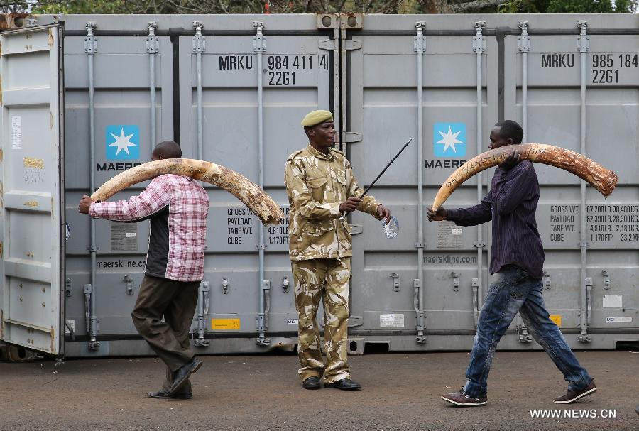 Le Kenya brûlera des stocks d