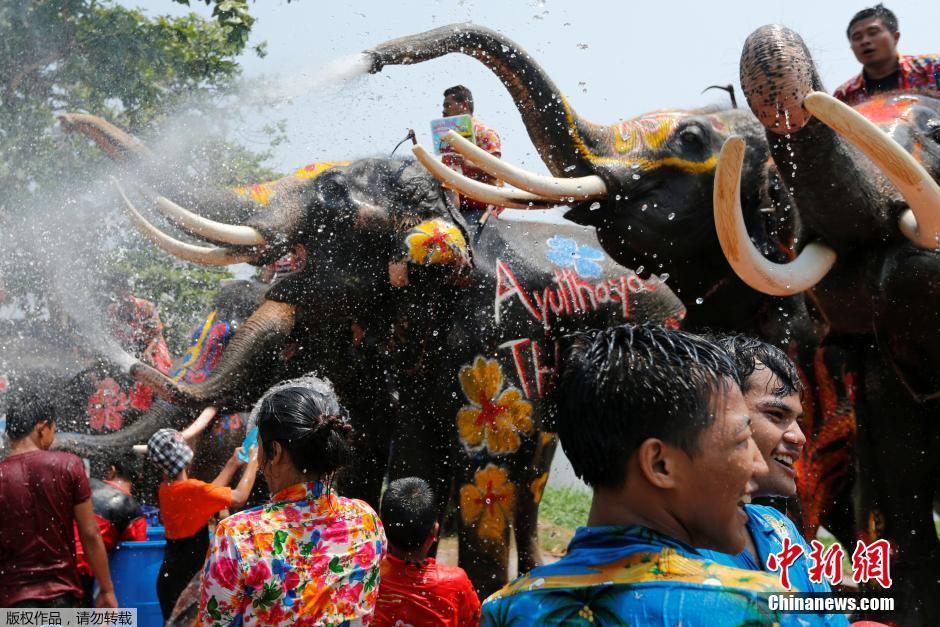 La célébration de Songkran en Thaïlande en photos