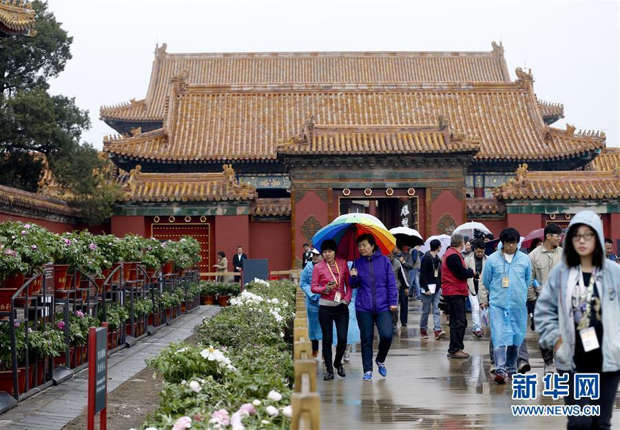 Beijing : les pivoines à l